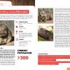 SHIFT-magazine #0004 - 1 - northern hairy-nosed wombat